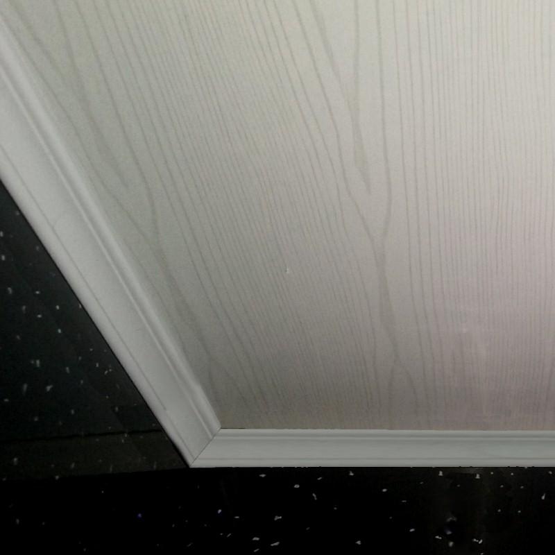 white ash800 - Bathroom Ceiling Panel Examples
